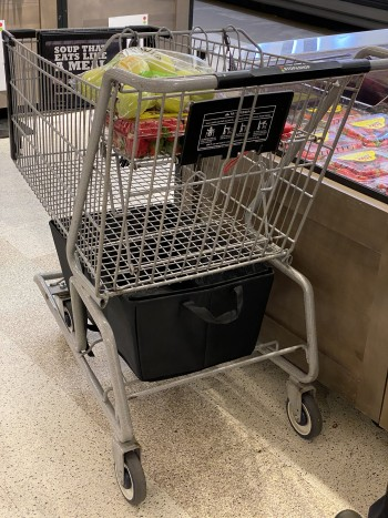 shopping-cart-with-tesla-trunk-container.JPG